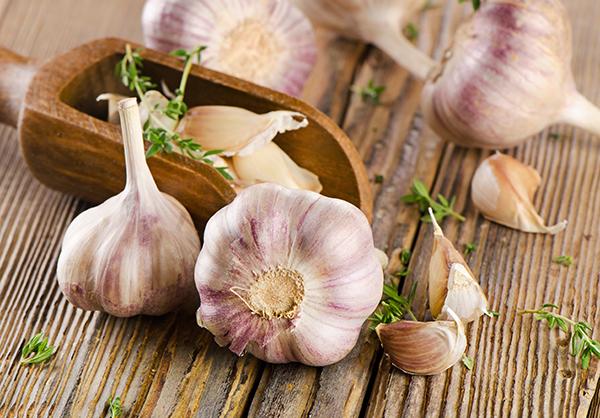 garlic on a wooden board. selective focus